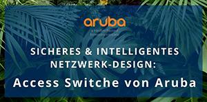 intelligentes und zukunftsweisendes Netzwerkdesign,  access switche